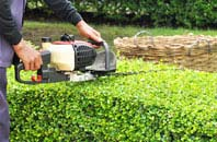 Stratford hedge trimming services