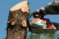 free Stratford tree removal quotes